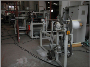 4.2 Plastic Packaging Net Extrusion Line